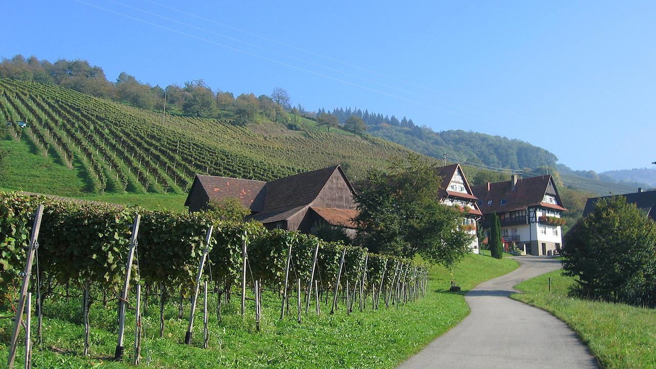 Sasbachwalden In The Black Forest