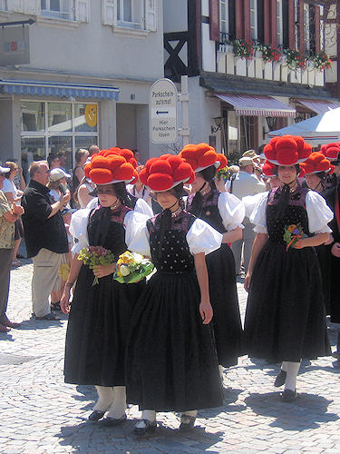 Typical Black Forest - the Bollenhut
